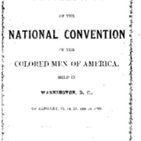 1869 National Convention in Washington DC 1.pdf